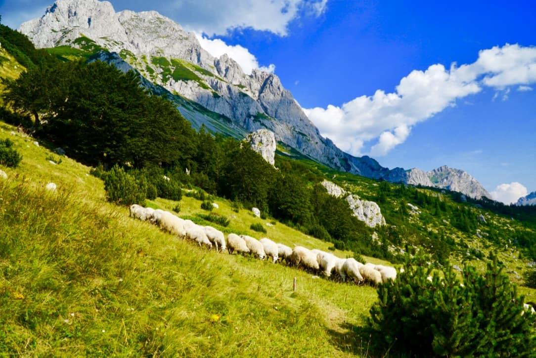 Maglic Via Dinarica Trail Itinerary