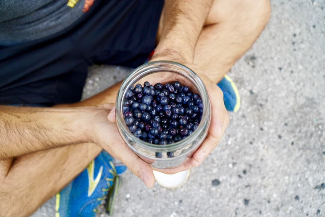 6 Bluberries at the roadside Our Via Dinarica Trail Itinerary   How We Backpacked the VDT