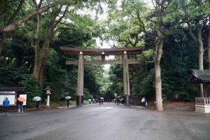 Two Days in Tokyo meiji jingu's inner gardens