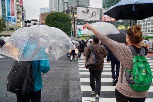 Two Days in Tokyo Shibuya Crossing