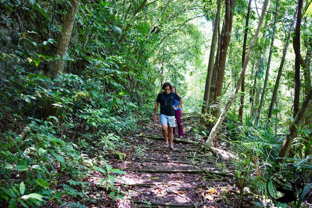 Take a jungle walk while you stay at Carp Island Resort in Palau
