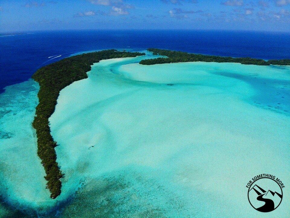 SCUBA diving in Palau is fantastic