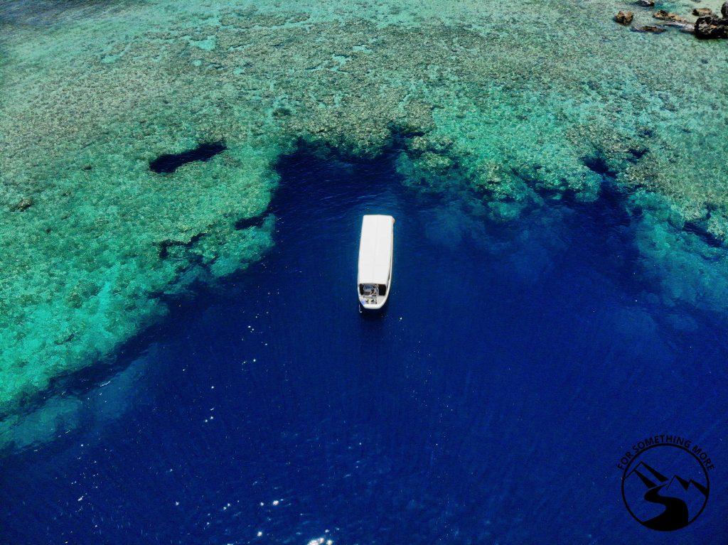 Palau SCUBA Diving Guide 4 1024x767 Palau SCUBA Diving Guide