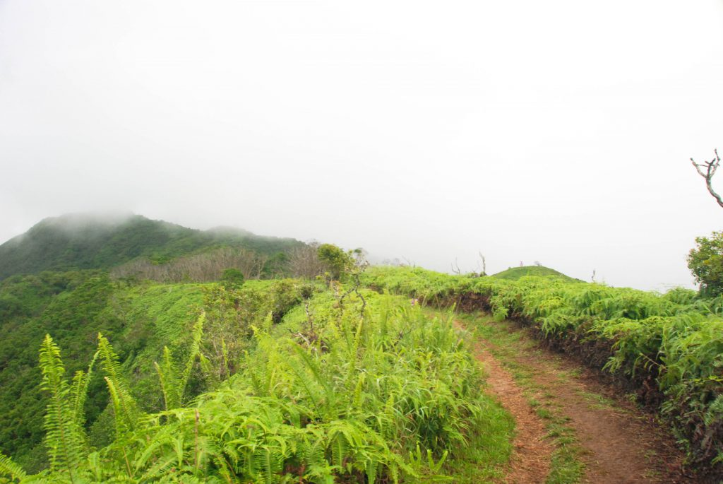 Hike the Waihe'e Ridge Trail in Maui