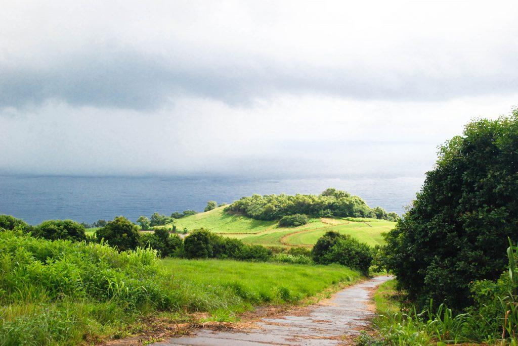 Hike the Waihe'e Ridge Trail in Maui