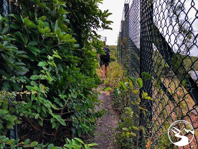 narrow hiking trail