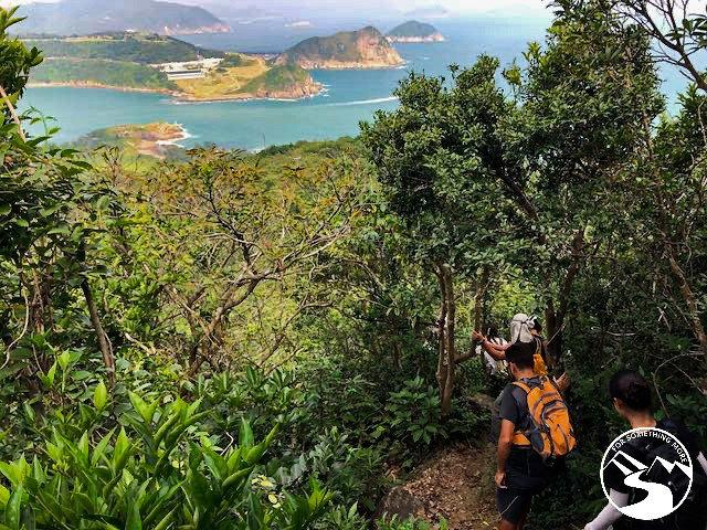 a dirt hiking trail