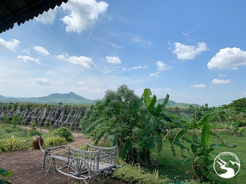 La Plantation in Kampot Cambodia