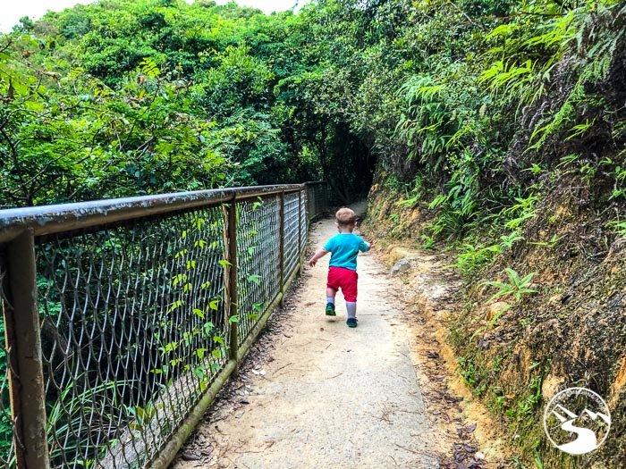 toddler hiking on trail