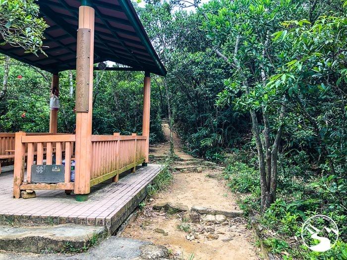 hut near shallow pools