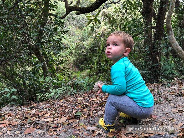 toddler exploring Hong Kong jungle