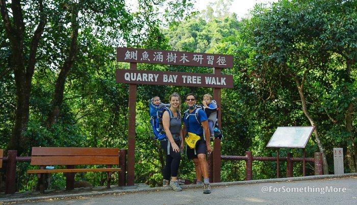ForSomethingMore at the Quarry Bay hike Quarry Bay Tree Walk (鰂魚涌樹木研習徑)
